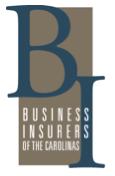 Business Insurers Carolinas